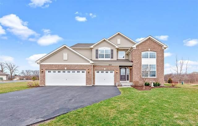 113 Telluride Lane, Volo, IL 60020 (MLS #11033540) :: Helen Oliveri Real Estate
