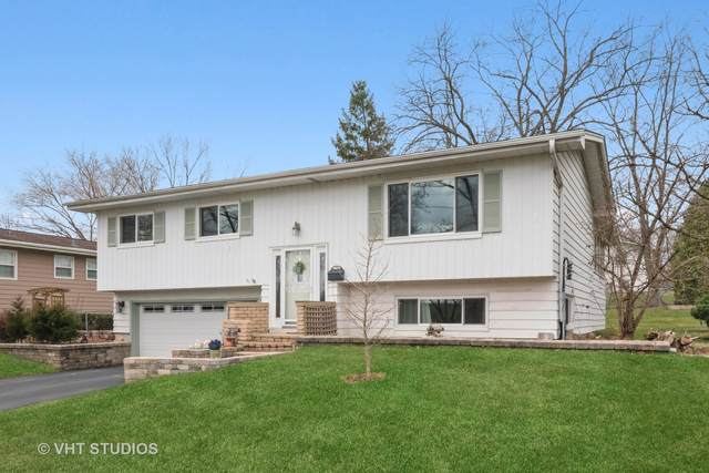5710 Dover Drive, Lisle, IL 60532 (MLS #11033987) :: Jacqui Miller Homes