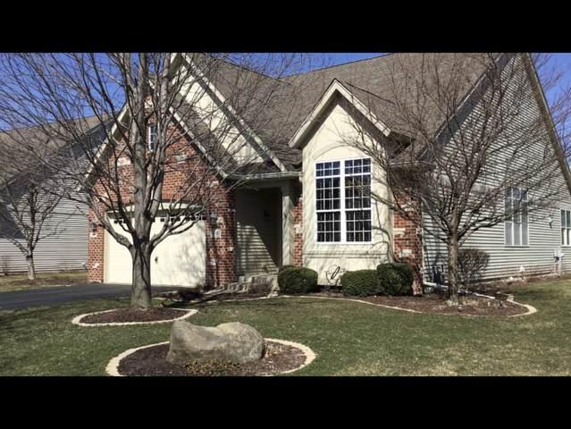 810 Colchester Drive, Oswego, IL 60543 (MLS #11034248) :: O'Neil Property Group