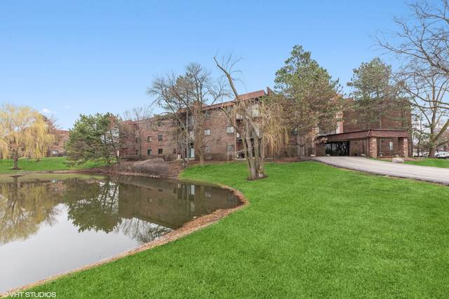 1002 Castilian Court B207, Glenview, IL 60025 (MLS #11034957) :: Helen Oliveri Real Estate