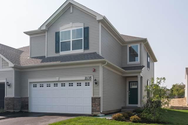 1182 Hawk Hollow Drive, Yorkville, IL 60560 (MLS #11035070) :: The Dena Furlow Team - Keller Williams Realty