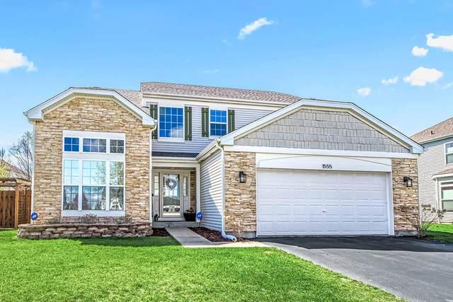 1555 Schumacher Drive, Bolingbrook, IL 60490 (MLS #11035146) :: Helen Oliveri Real Estate