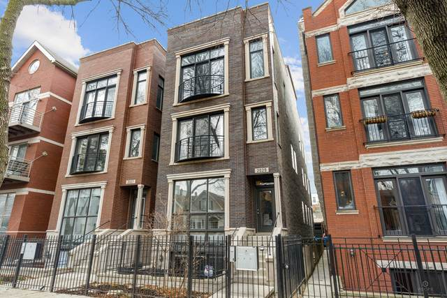 2029 W Rice Street #2, Chicago, IL 60622 (MLS #11036466) :: Helen Oliveri Real Estate