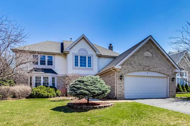 9 Nicolette Avenue, Schaumburg, IL 60173 (MLS #11036505) :: BN Homes Group