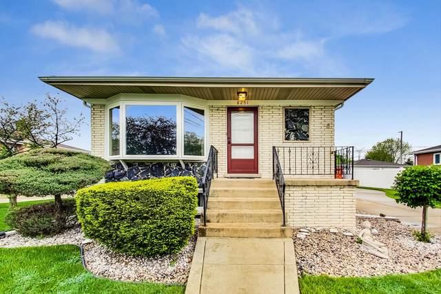 8251 S Oketo Avenue, Bridgeview, IL 60455 (MLS #11036526) :: Helen Oliveri Real Estate