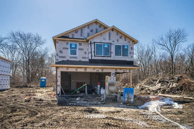 3707 139th Place, Robbins, IL 60472 (MLS #11037370) :: Helen Oliveri Real Estate
