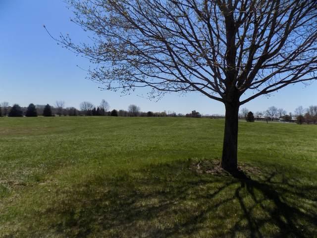 17405 Wildflower Circle, Union, IL 60180 (MLS #11037462) :: Helen Oliveri Real Estate