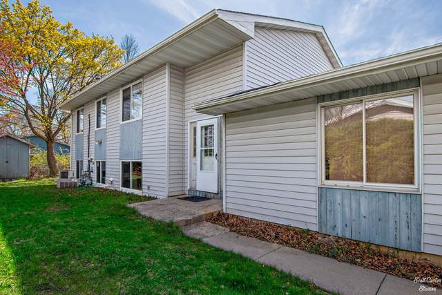 1900 Sheila Street, Woodstock, IL 60098 (MLS #11037698) :: Helen Oliveri Real Estate