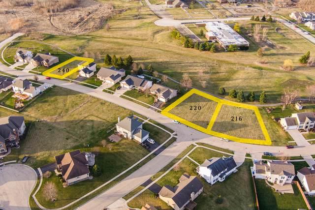 216 Saint Andrews Drive, Dekalb, IL 60115 (MLS #11037900) :: John Lyons Real Estate