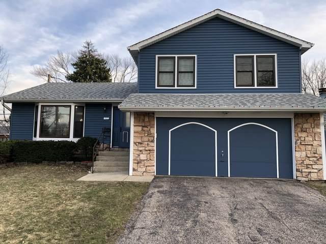 937 E Forest Avenue, Des Plaines, IL 60018 (MLS #11038032) :: Helen Oliveri Real Estate