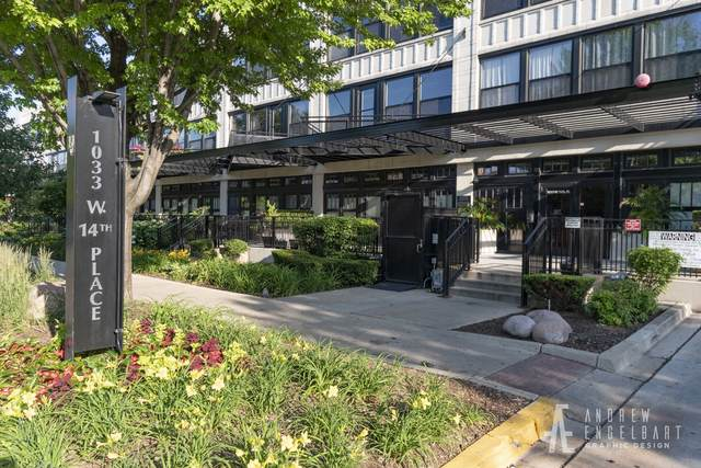 1033 W 14th Place #113, Chicago, IL 60608 (MLS #11038422) :: RE/MAX IMPACT