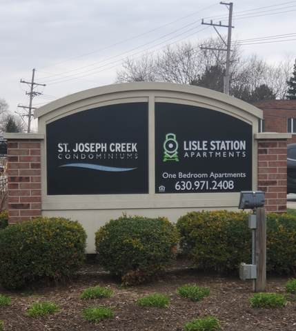 4721 Saint Joseph Creek Road 4G, Lisle, IL 60532 (MLS #11038513) :: Carolyn and Hillary Homes