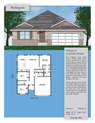 1675 Condor Drive, Manteno, IL 60950 (MLS #11038595) :: BN Homes Group