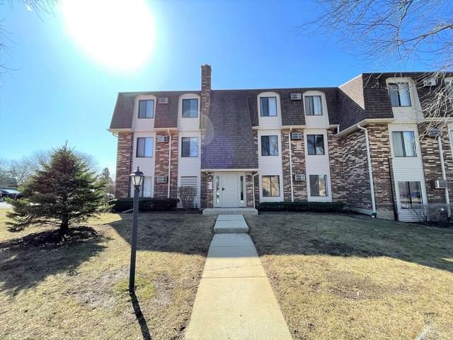 985 S Court Of Shorewood 1A, Vernon Hills, IL 60061 (MLS #11039029) :: Helen Oliveri Real Estate