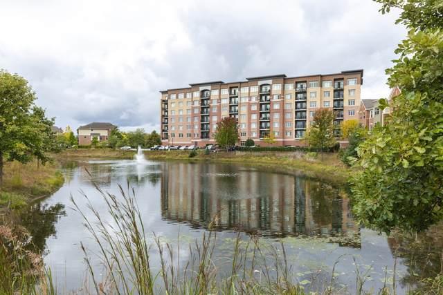 1199 Port Clinton Road #303, Vernon Hills, IL 60061 (MLS #11039074) :: Helen Oliveri Real Estate