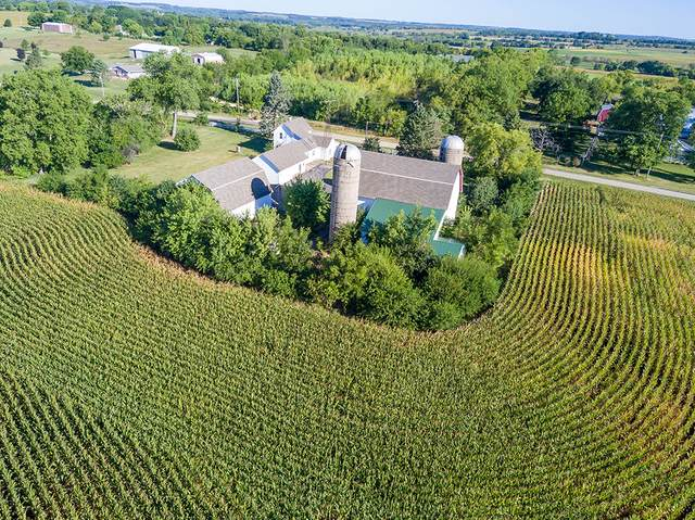 14266 Berglund Road, Pecatonica, IL 61063 (MLS #11039363) :: Helen Oliveri Real Estate