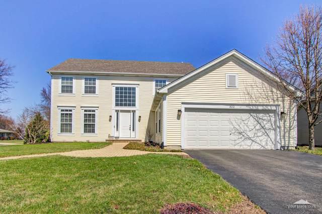 322 Century Drive, Oswego, IL 60543 (MLS #11039659) :: O'Neil Property Group