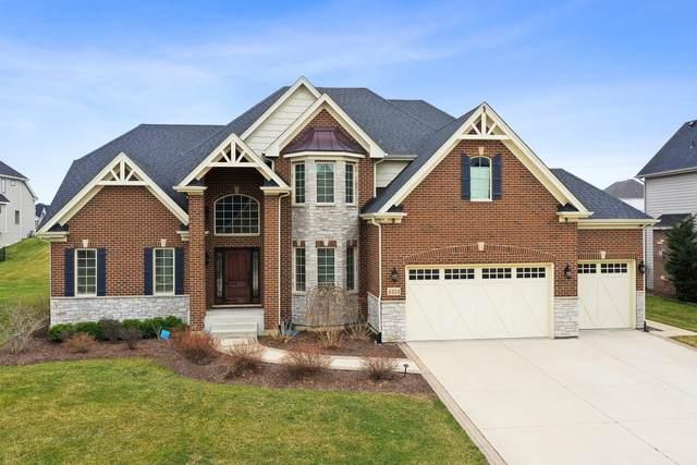 4324 Winterberry Avenue, Naperville, IL 60564 (MLS #11039742) :: RE/MAX IMPACT