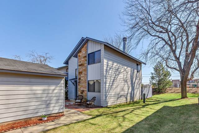 117 Windsor Drive, Vernon Hills, IL 60061 (MLS #11039753) :: The Dena Furlow Team - Keller Williams Realty