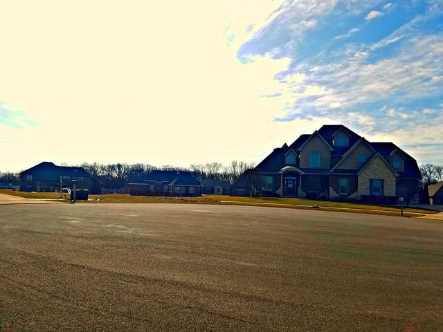 13887 W Wildwood Lane, Homer Glen, IL 60491 (MLS #11039765) :: RE/MAX IMPACT