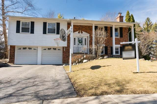 280 Red Bud Place, Buffalo Grove, IL 60089 (MLS #11039798) :: Helen Oliveri Real Estate
