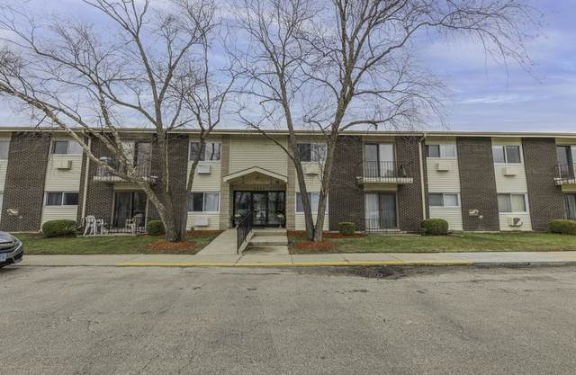 8940 David Place 208H, Des Plaines, IL 60016 (MLS #11040109) :: The Spaniak Team