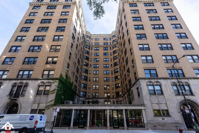 1755 E 55th Street #503, Chicago, IL 60615 (MLS #11040600) :: The Dena Furlow Team - Keller Williams Realty
