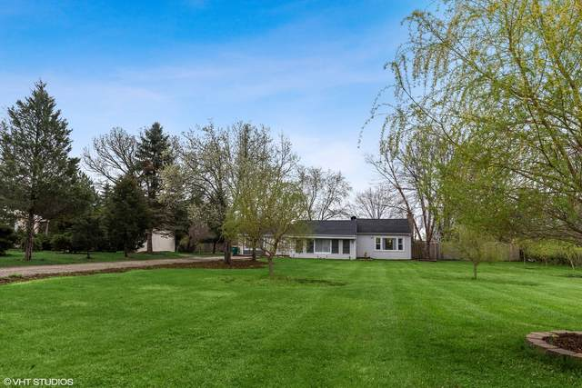 20931 W Rand Court, Palatine, IL 60074 (MLS #11040637) :: The Wexler Group at Keller Williams Preferred Realty