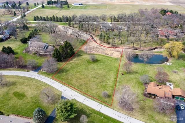 05S390 Deer Ridge Path, Big Rock, IL 60511 (MLS #11041301) :: Helen Oliveri Real Estate