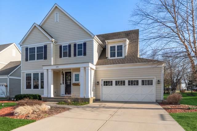 206 Julep Avenue, Oswego, IL 60543 (MLS #11041321) :: Helen Oliveri Real Estate