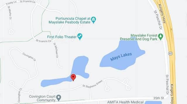 910 Saint Stephens Green, Oak Brook, IL 60523 (MLS #11041449) :: BN Homes Group