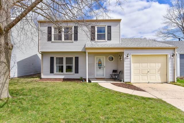 2415 Sunflower Court, Aurora, IL 60506 (MLS #11041784) :: Ani Real Estate
