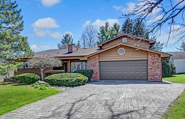 7259 W 119th Place, Palos Heights, IL 60463 (MLS #11041868) :: The Spaniak Team
