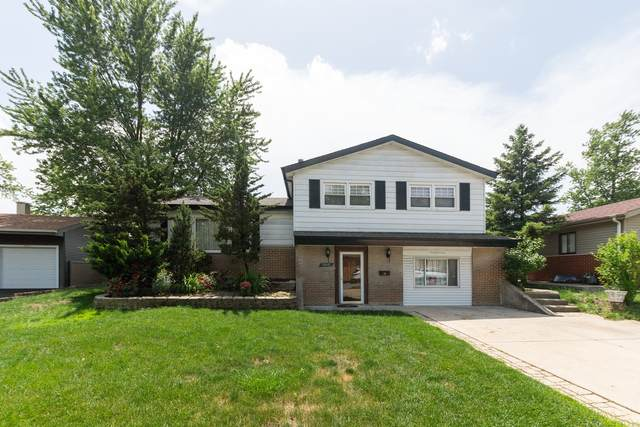 9001 Forest Lane, Hickory Hills, IL 60457 (MLS #11042243) :: RE/MAX IMPACT