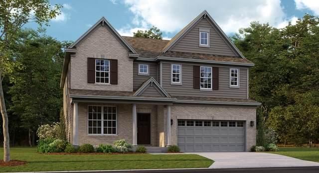 184 Barry Road, South Elgin, IL 60177 (MLS #11042462) :: Helen Oliveri Real Estate