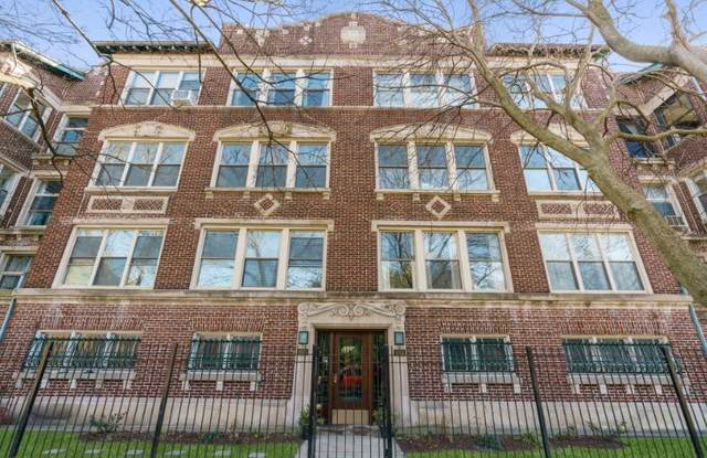 1053 E Hyde Park Boulevard #1, Chicago, IL 60615 (MLS #11042721) :: The Dena Furlow Team - Keller Williams Realty