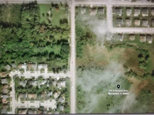 115 S Fairlawn Avenue, Mundelein, IL 60060 (MLS #11043354) :: Helen Oliveri Real Estate