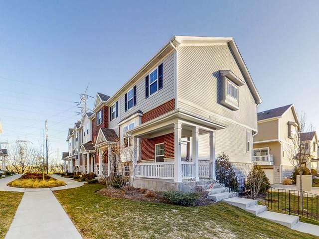 1128 Evergreen Avenue, Des Plaines, IL 60016 (MLS #11043734) :: The Spaniak Team