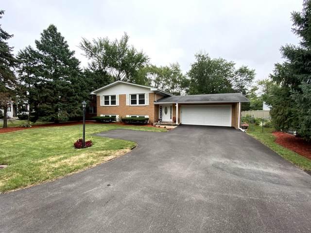 573 Maple Avenue, Lisle, IL 60532 (MLS #11044073) :: Jacqui Miller Homes