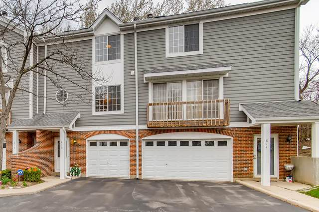 816 W Saint Johns Place, Palatine, IL 60067 (MLS #11044196) :: BN Homes Group