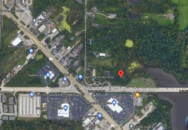 20672 Lake Cook Road, Palatine, IL 60067 (MLS #11044201) :: Helen Oliveri Real Estate