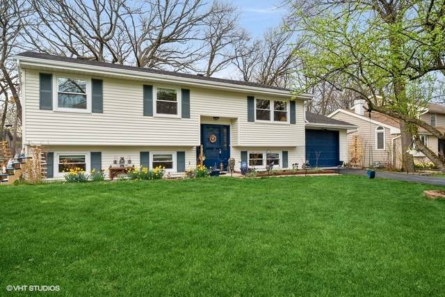 369 Hickory Road, Lake Zurich, IL 60047 (MLS #11044277) :: The Perotti Group