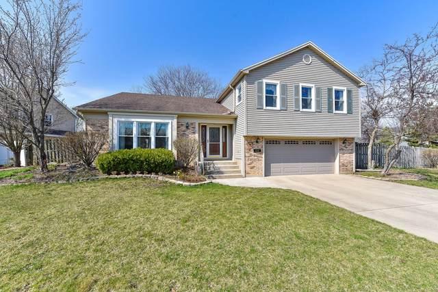 Address Not Published, Hoffman Estates, IL 60169 (MLS #11044630) :: Helen Oliveri Real Estate