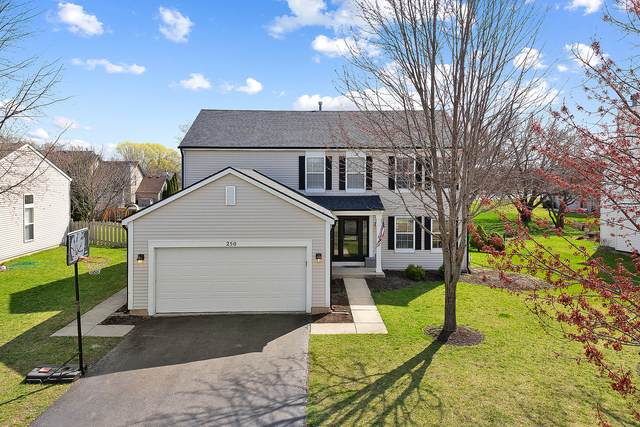 250 Paradise Parkway, Oswego, IL 60543 (MLS #11045120) :: O'Neil Property Group