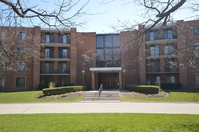 1605 E Central Road 317C, Arlington Heights, IL 60005 (MLS #11045886) :: Helen Oliveri Real Estate
