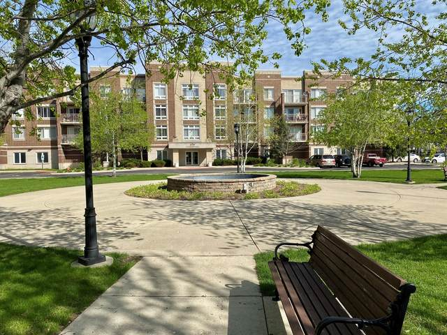 6759 W Forest Preserve Drive #301, Chicago, IL 60634 (MLS #11045891) :: The Perotti Group