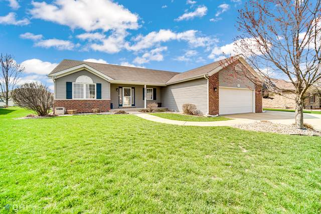 973 Louise Drive, Momence, IL 60954 (MLS #11045965) :: The Spaniak Team