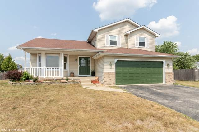 6907 Riley Drive, Joliet, IL 60431 (MLS #11046085) :: The Wexler Group at Keller Williams Preferred Realty