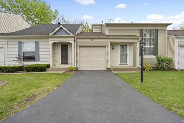 253 W Fairfield Court, Palatine, IL 60067 (MLS #11046246) :: Ani Real Estate