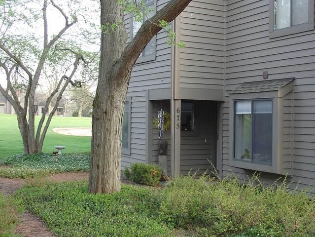 675 Golf Lane #952, Lake Barrington, IL 60010 (MLS #11046366) :: Helen Oliveri Real Estate